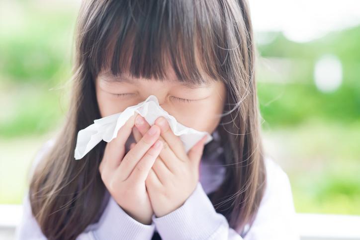 꽃가루 지수 확인했나요? '봄철 알레르기' 막으려면