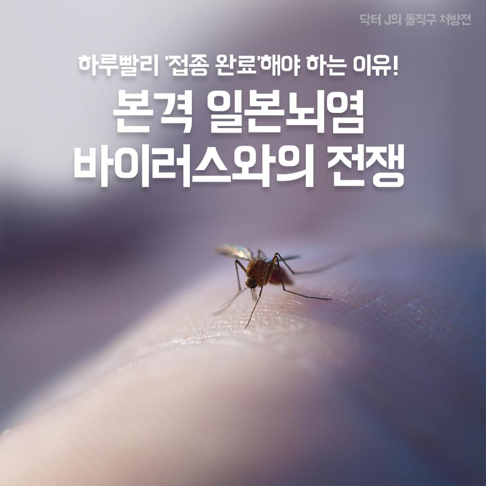 하루빨리 '접종 완료'해야 하는 이유! 본격 일본뇌염 바이러스와의 전쟁